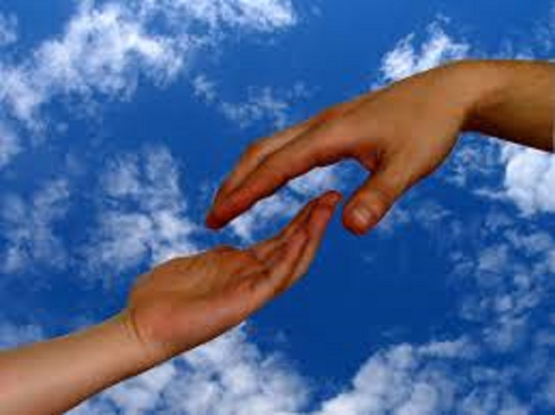 Human gest